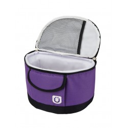 Lunchbox Purple