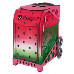 Watermelon Pink frame